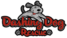 Dashing Dog Rescue Logo